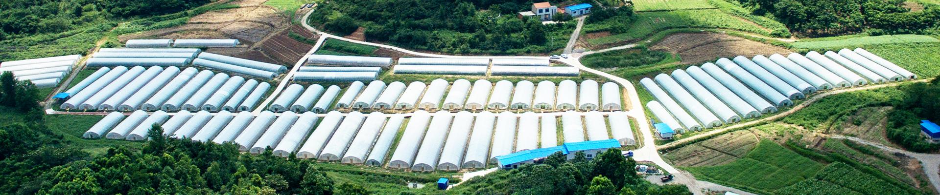 龙岩市昱德生态农业发展有限公司