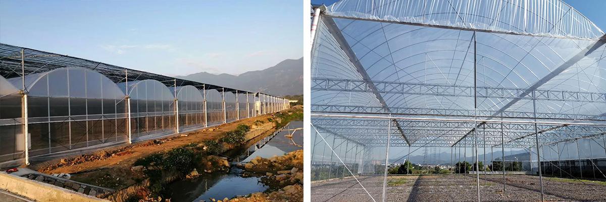 龙岩温室大棚建造-龙岩市昱德生态农业发展有限公司